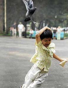 bird_poop_kid