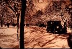 b-kiseleff-iarna