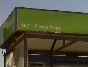 ferma rosie