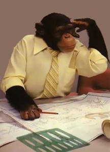 monkey_office_man1