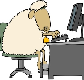 sheep-at-pc
