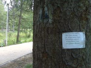 Publicitate eco